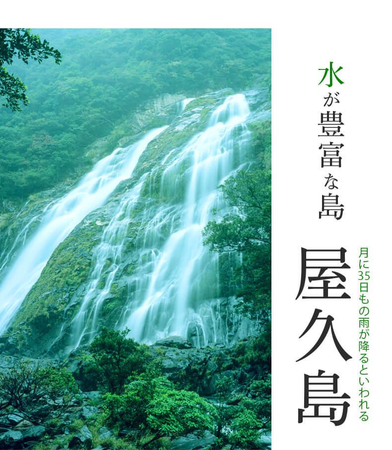 数千年の時を生きた水 雨を作る神秘の島屋久島